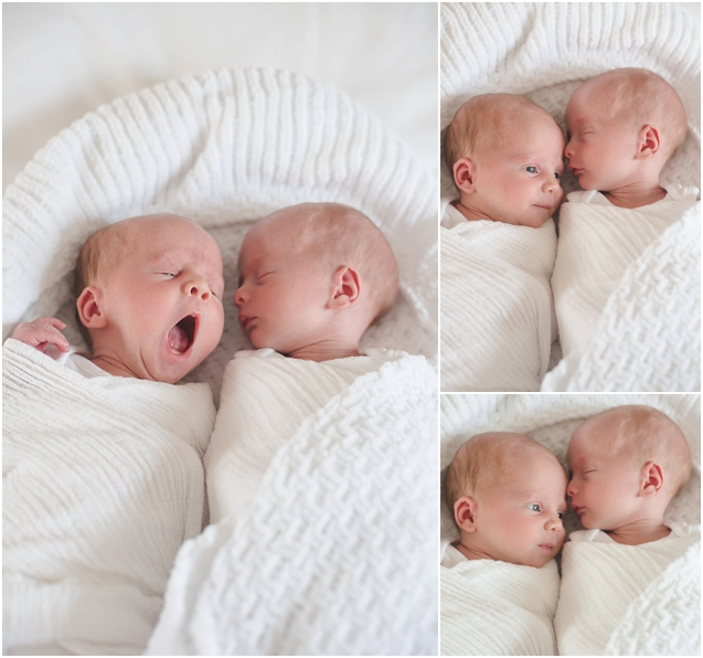 New born twin photography_0124
